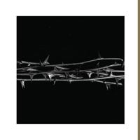 AMENRA - De Evenmens artwork