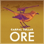 Carpal Tullar - She Is a Player