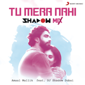 Tu Mera Nahi (feat. DJ Shadow Dubai) [Shadow Mix] - Amaal Mallik