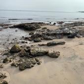 Beach Rocks artwork