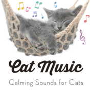 Cat Music - Calming Sounds for Cats - Cat Music, Pet Care Club & RelaxMyCat
