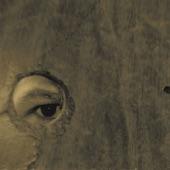 Boom Bip & Doseone - The Birdcatcher's Oath