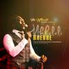 Mkhululi Bhebhe - Everlasting Father (Live) artwork