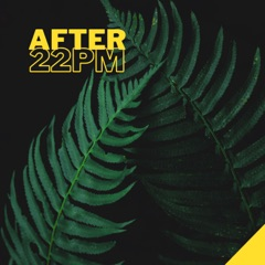After 22pm - The Best 2021 Playlist, Relax on the Beach, Ibiza Party Lounge, Cafe Relaxation, Bali Chill Out, Music del Mar