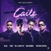 Caile (feat. Zion & De La Ghetto) - Single