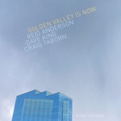 Reid Anderson/Dave King/Craig Taborn - City Diamond