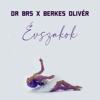 Dr Brs & Berkes Olivér - Évszakok artwork