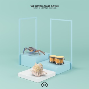 Plux & Grant Woell – We Never Come Down – Single [iTunes Plus AAC M4A]