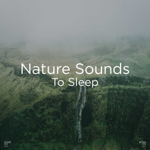 "Nature Sounds Nature Music & Nature Sounds - !!"" Nature Sounds to Sleep ""!!"