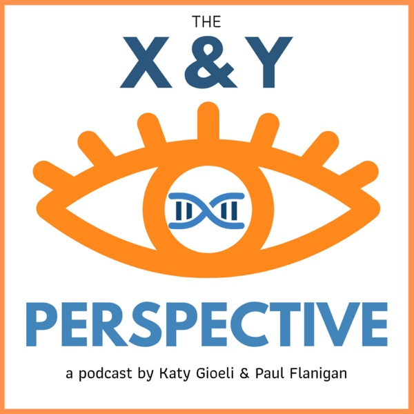 The X&Y Perspective