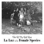 La Luz - Tale of My Lost Love (Cover)
