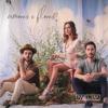 Amores e Flores - Melim mp3