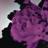 Download lagu John Legend - All of Me (Tiësto's Birthday Treatment Remix) [Radio Edit].mp3