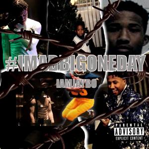 IAM Jaybo - #Imabbigoneday
