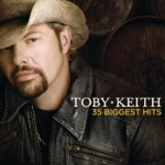 Toby Keith - You Ain't Much Fun