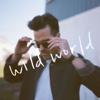 Trent Dabbs - Wild World artwork
