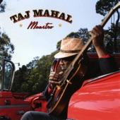 Taj Mahal - TV Mama