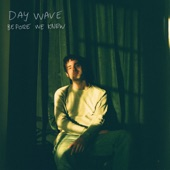 Day Wave - Before We Knew