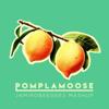 Pomplamoose - Jamirobeegees Mashup: Stayin' Alive / Virtual Insanity 插圖