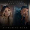 Ayla Çelik & Hakan Altun - Seviyoruz Hâlâ artwork
