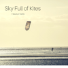 Sky Full of Kites