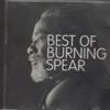 Burning Spear - Identity artwork