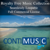 ContiMusic - Hidden Beauty artwork