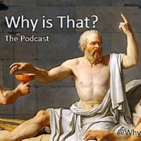 Podcast cover art for Why Is That Podcast