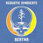 Acoustic Syndicate - Bertha