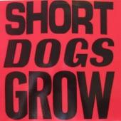 Short Dogs Grow - Rico's Blues