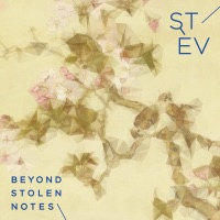 Beyond Stolen Notes by Stev on Apple Music