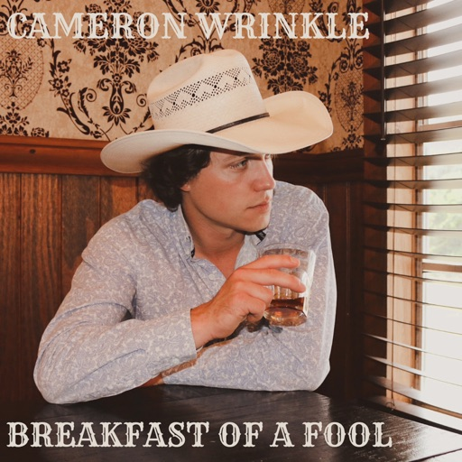 Art for Breakfast of a Fool by Cameron Wrinkle