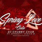 Spring Love Cutie (feat. Dynasty & Stevie B)