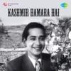 Dil E Nadan Tujhe Hua Kya Hai From Kashmir Hamara Hai Single