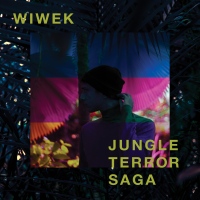 Wiwek - Lost City artwork