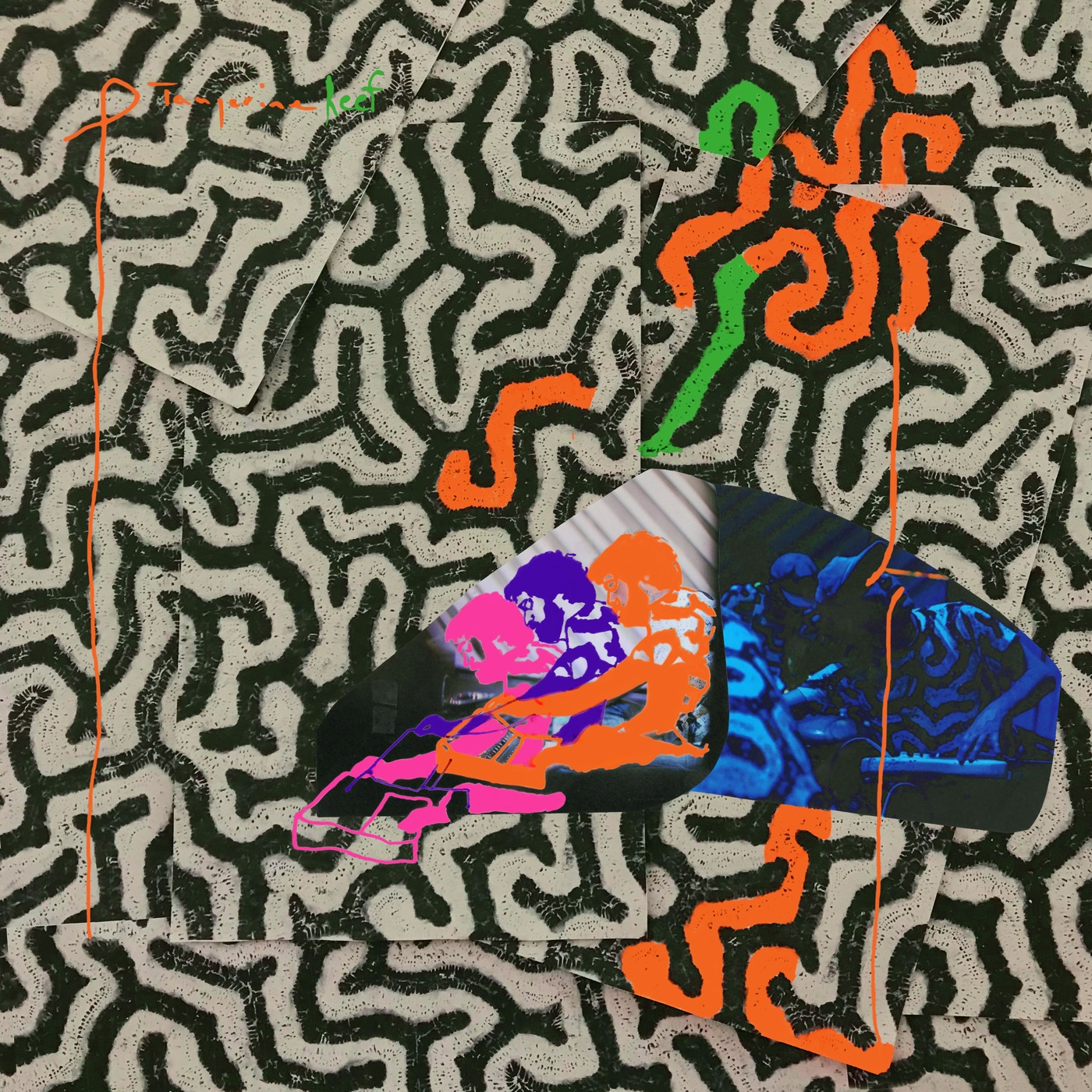 Download animal collective tangerine reef itunes plus aac m4a download animal collective tangerine reef itunes plus aac m4a plus premieres malvernweather Image collections