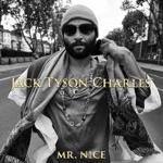 Mr. Nice - Single