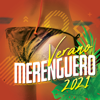 Varios Artistas - Verano Merenguero 2021 Grafik
