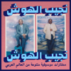 Najib Alhoush - Ya Aen Daly (Habibi Funk 015) artwork