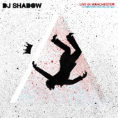 DJ Shadow - Transmission Mountain - Live In Manchester