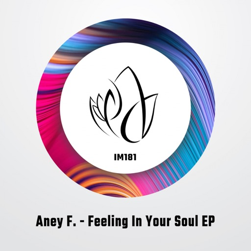 Feeling in Your Soul - Single by Aney F