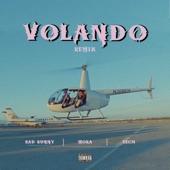Volando (Remix) artwork