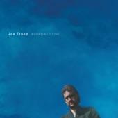 Joe Troop - Love Along the Way (feat. Tim O'Brien)