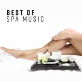 Best of Spa Music: Ultimate Wellness Center Sounds, Perfect Background Music for Relaxation, Meditation, Sleep, Massage