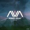Ahmed Helmy - Founder kunstwerk