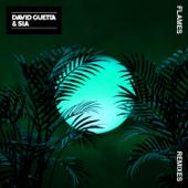 Flames (Robin Schulz Remix) - David Guetta & Sia
