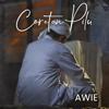 Awie - Coretan Pilu artwork
