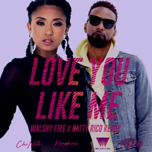 Love You Like Me (feat. Konshens) [Walshy Fire & Natty Rico Remix] - Single Mp3 Download
