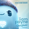 """Liam Payne - Sunshine (From the Motion Picture """"Ron's Gone Wrong"""" / Acoustic) portada"""