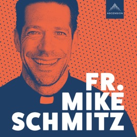 The Fr Mike Schmitz Catholic Podcast